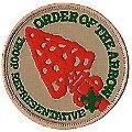 OA Rep logo